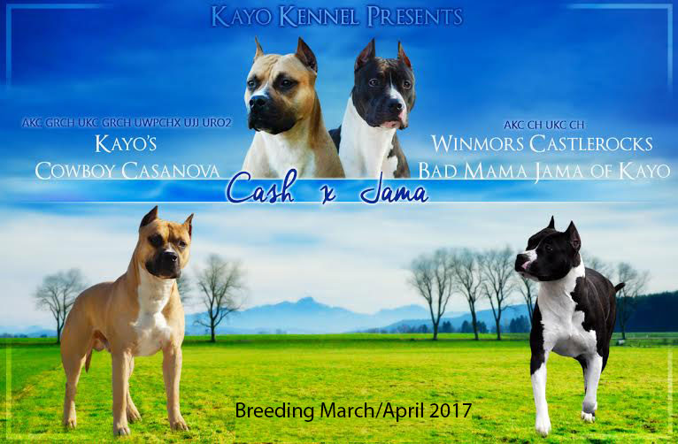Cash and Jama breeding